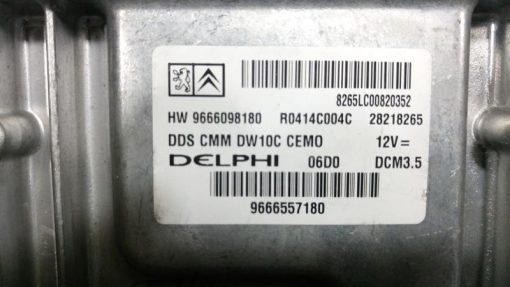 dsc_0063-medium