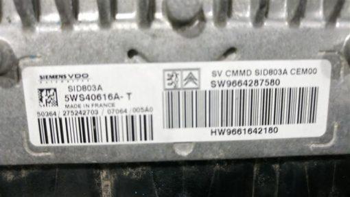 dsc_0088-medium