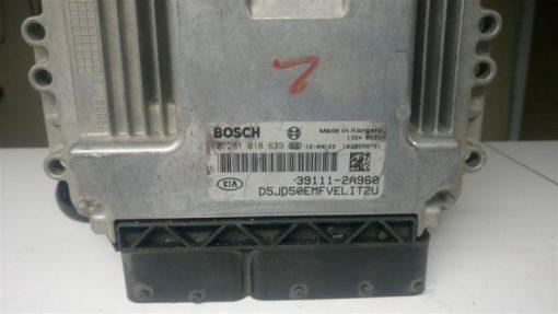 DSC_0012 (Medium)